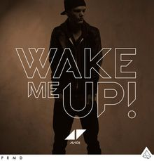 Avici-wake-me-up in Wake Me Up von Avicii ist der Sommerhit 2013