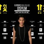 Pressewand-Brandon-Howard-DSYLM-150x150 in Sieben der Top Ten-Alben 2013 stammen von nationalen Künstlern